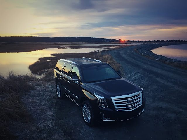 2016 Cadillac Escalade Platinum grey