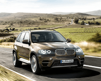 2011 BMW X5 Brown