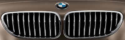 2013 BMW 6-Series Gran Coupe Grille