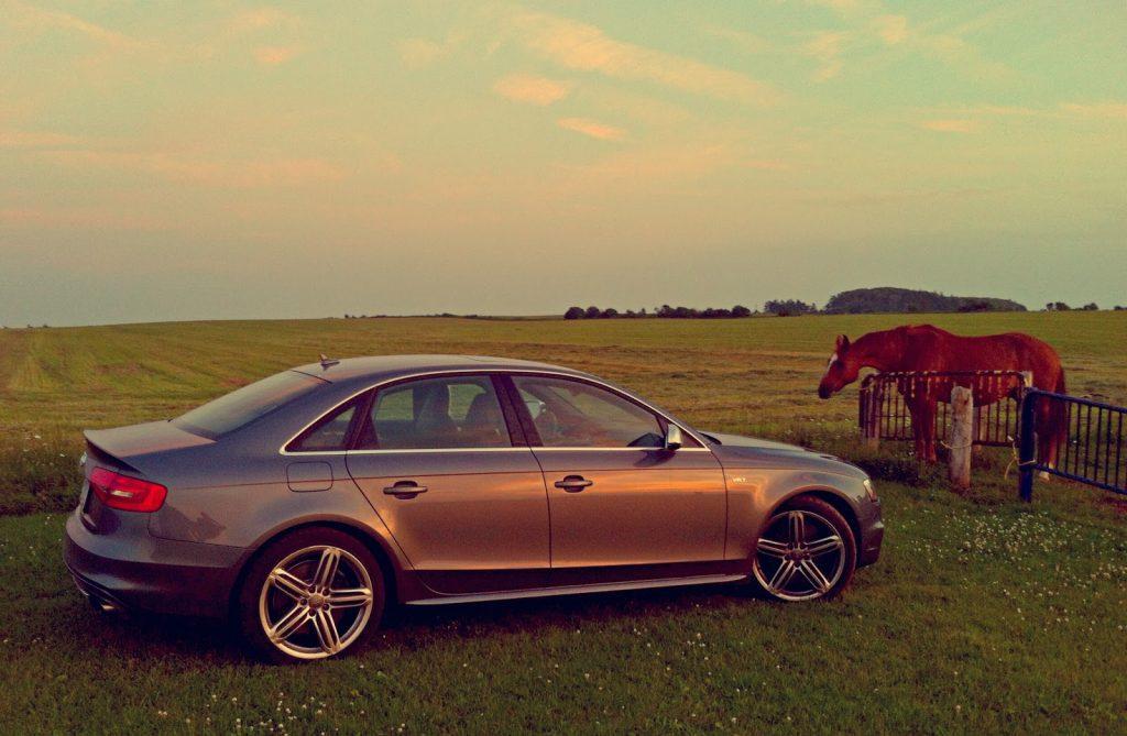 2014 Audi S4 Technik horses