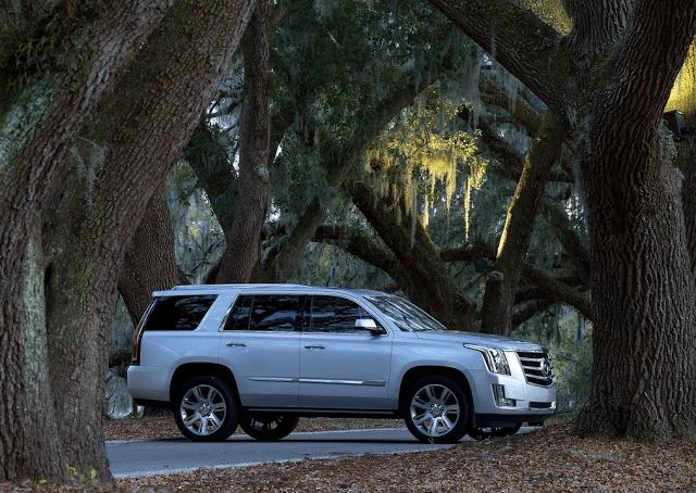 2015 Cadillac Escalade forest