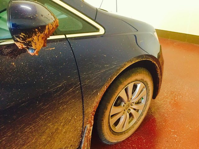 2015 Honda Odyssey dirty PEI red mud