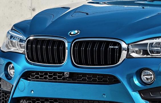 2016 BMW X6 M grille logo roundel