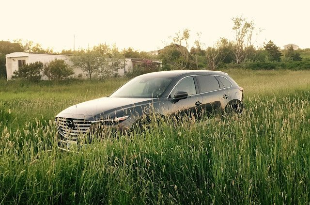 2016 Mazda CX-9 Signature tall grass