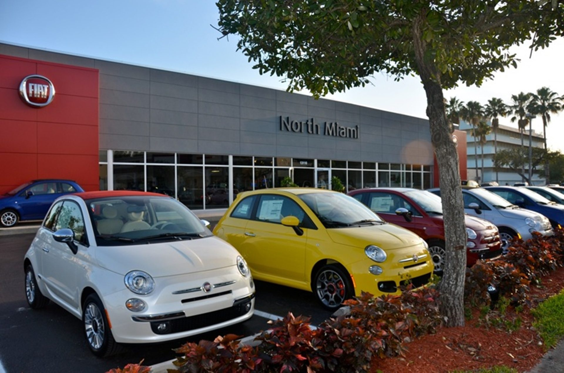 Fiat studio in Miami with multicolored row of Fiat cars parked outside